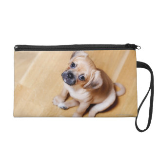 Pug Cross Cavalier King Charles Spaniel Wristlet Purse