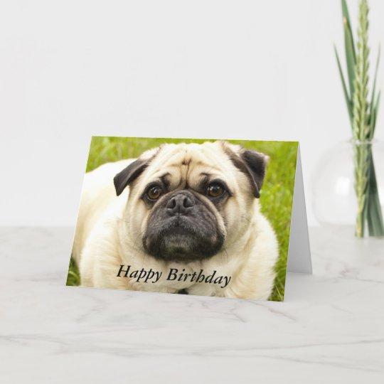 Pug Cute Dog Beautiful Photo Custom Birthday Card