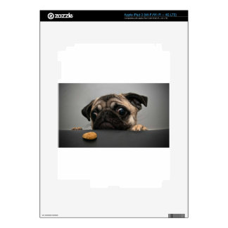 Pug Decal For iPad 3