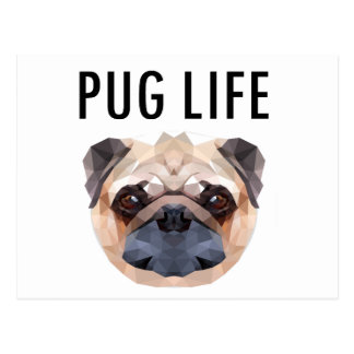 Pug Design Dog Unique Postcard
