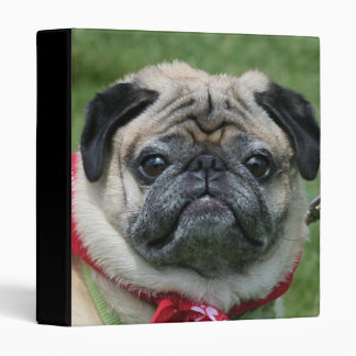 Pug dog binder