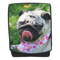Pug dog boldface backpack