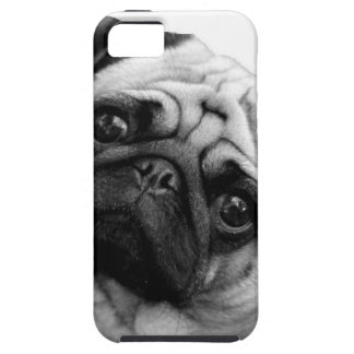 Pug Dog iPhone 5 Covers