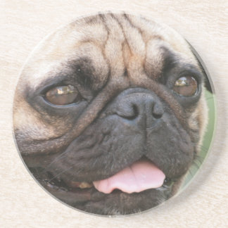 Pug Dog Coaster