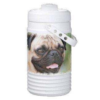 Pug Dog Cooler