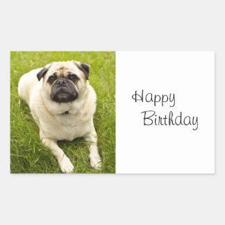 Pug dog happy birthday beautiful photo stickers