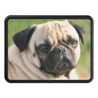 Pug Dog Hitch Cover