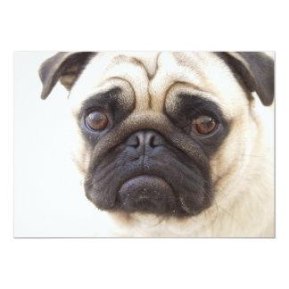 Pug Dog Invitation