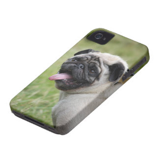 Pug dog  iphone 4 case mate i/d cute photo