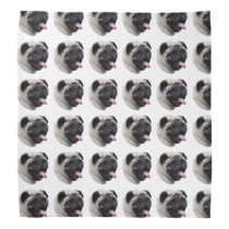 Pug dog pet photo portrait bandana