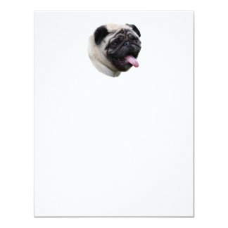 Pug dog pet photo portrait 4.25x5.5 paper invitation card