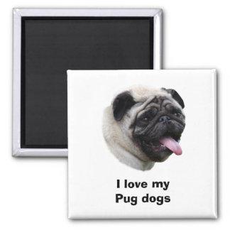 Pug dog pet photo portrait refrigerator magnet