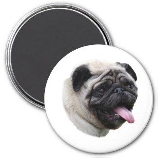 Pug dog pet photo portrait refrigerator magnets