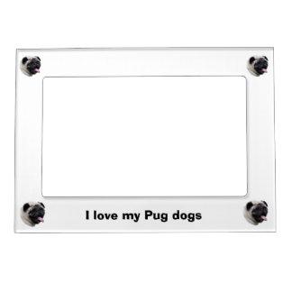 Pug dog pet photo portrait magnetic photo frame