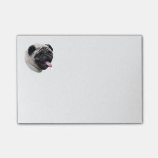Pug dog pet photo portrait post-it notes
