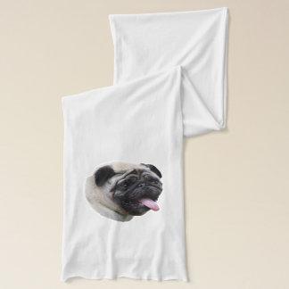 Pug dog pet photo portrait scarf