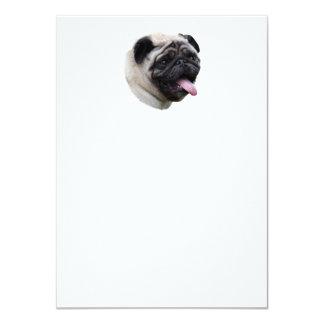 Pug dog photo portrait announcement