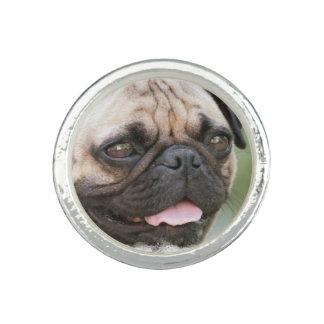 Pug Dog Photo Rings