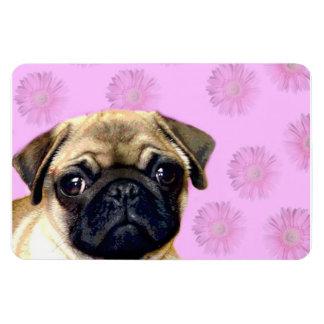 Pug dog rectangular photo magnet