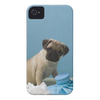 Pug dog sitting on bed by hot water bottle and iPhone 4 Case-Mate case