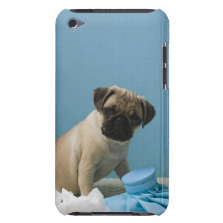 Pug dog sitting on bed by hot water bottle and iPod touch case