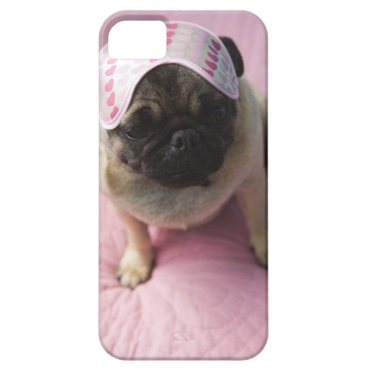 Pug dog with eye mask on head sitting on bed, iPhone SE/5/5s case