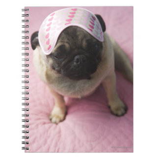 Pug dog with eye mask on head sitting on bed, spiral notebook