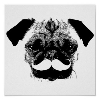 Pug Dog with Mustache Black & White Poster