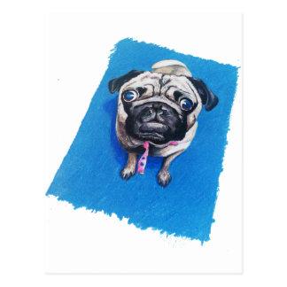 Pug Drawing Postcard