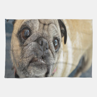 Pug Face Kitchen Towel