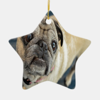 Pug Face Christmas Tree Ornament