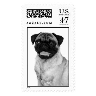 Pug Face Postage