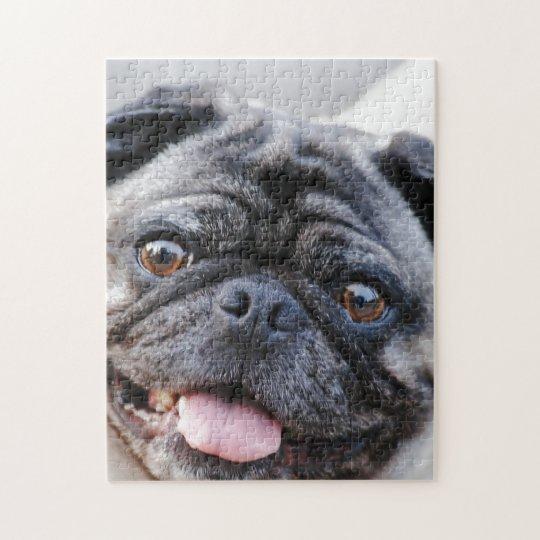 Pug face, puzzle