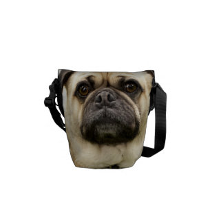Pug funny face dog beautiful photo, gift courier bag