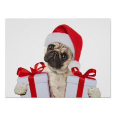 Pug gifts - dog claus - funny pugs - funny dogs poster