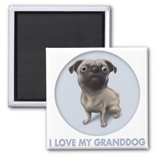 Pug Granddog 2 Inch Square Magnet