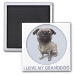 Pug Granddog Magnet