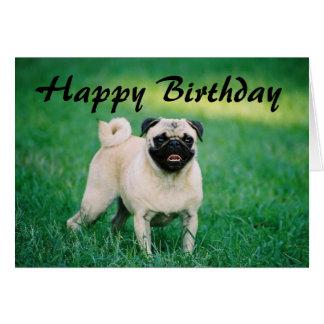 Pug Happy Birthday Card