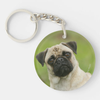 Pug Head Cocked Looking at Camera Double-Sided Round Acrylic Keychain