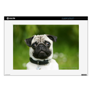 """Pug headshot decal for 15"""" laptop"""