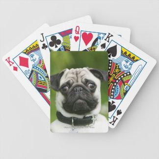 Pug headshot bicycle card decks