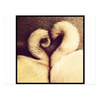 Pug Heart Tails Postcard