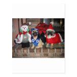 Pug Holiday Postcard