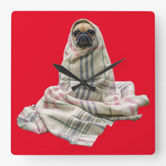 Pug in a Blanket Custom Background Color Square Wall Clock