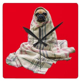 Pug in a Blanket Custom Background Color Square Wallclocks