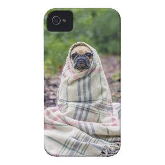 Pug in a Blanket iPhone 4 Case-Mate Case