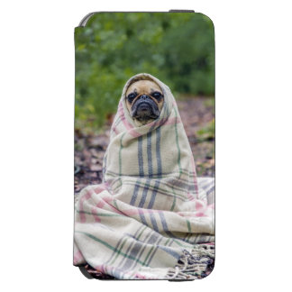 Pug in a Blanket iPhone 6/6s Wallet Case