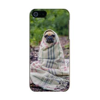 Pug in a Blanket Metallic iPhone SE/5/5s Case