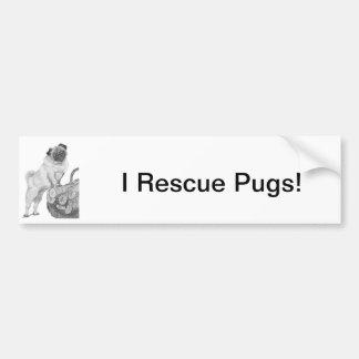 Pug in Black & White Car Bumper Sticker