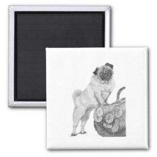 Pug in Black & White Magnet